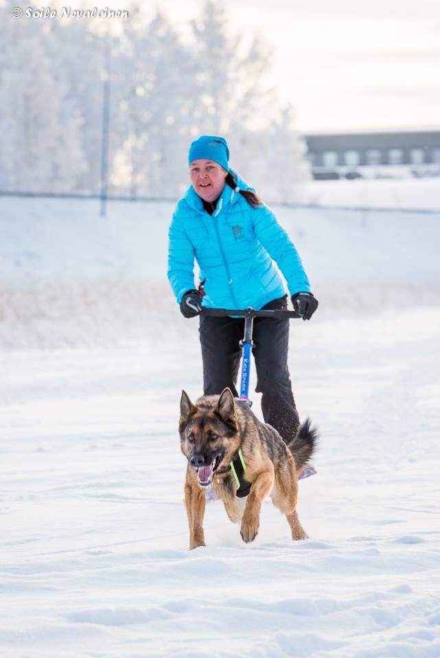 Kuopion Eläinlääkärikeskus, kek.fi